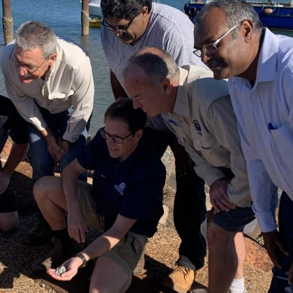 Hatchery-bred oysters transferred to Pilbara trial sites